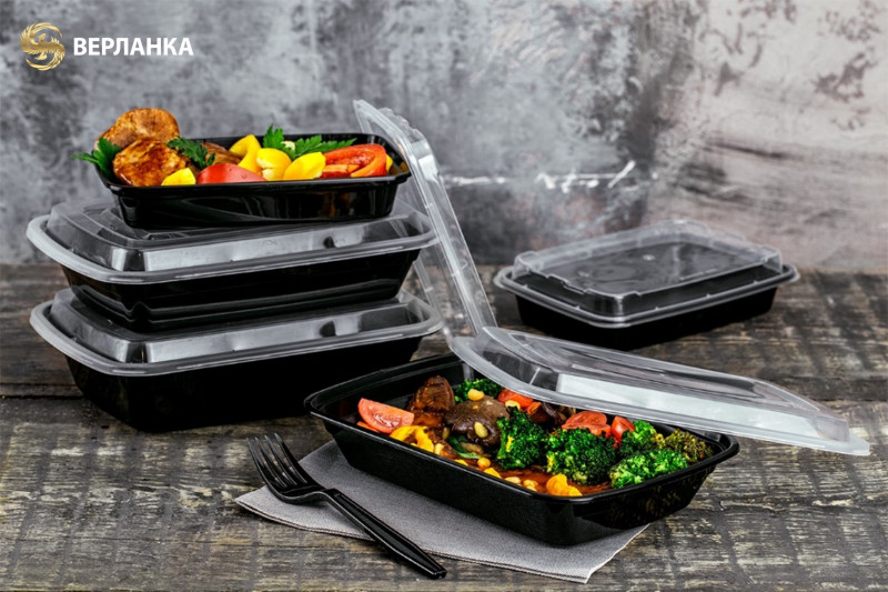 Disposable take-out containers with lid